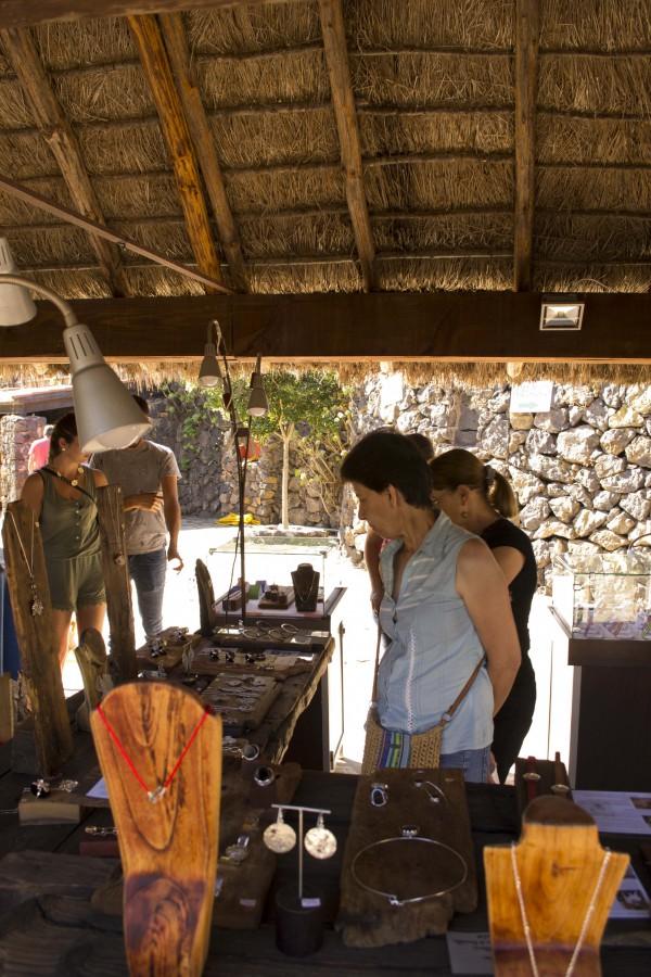 Feria Pinolere 2015